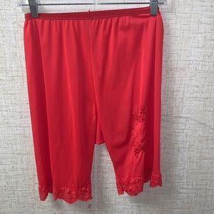Vanity Fair vintage red knickers size 26